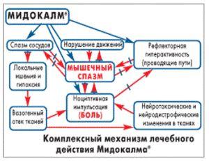 как действует Мидокалм