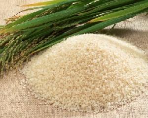 рисовая терапия