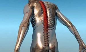 Артрит тазобедренного сустава основные симптомы методы лечения