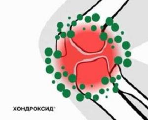 воздействие Хондроксида на организм