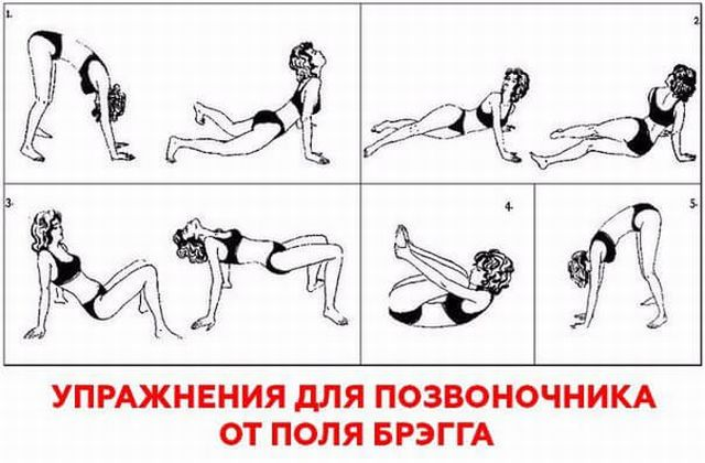 5 упражнений поля брэгга