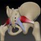 локализация грушевидной мышцы