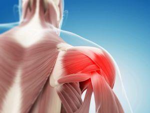 болезнь в плече