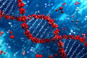 сбой в генах