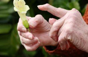 народные средства от ревматоидного артрита