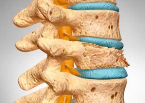развитие остеопороза