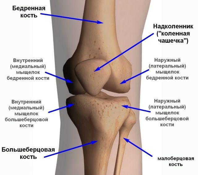Повреждение передней крестообразной связки коленного сустава лечение