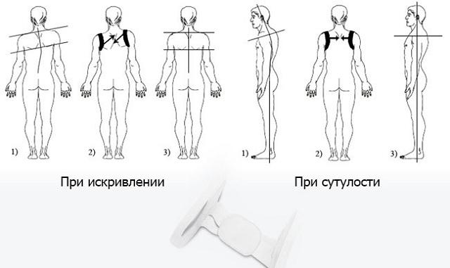 польза от chest belt