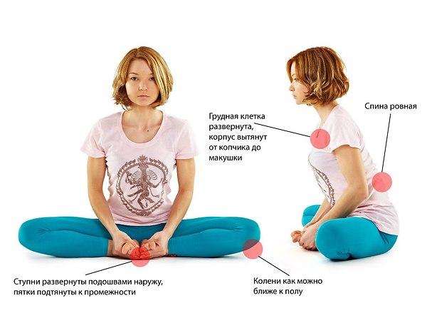 бабочка в йоге